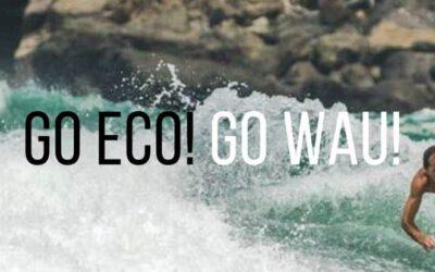 Design Thinking schafft neue Produktideen für WAU ECO-Surfboards